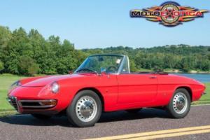 1967 Alfa Romeo Spider Duetto Boattail Spider 1600