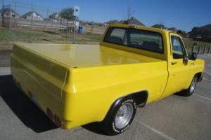 1979 Chevrolet C-10 Short Bed