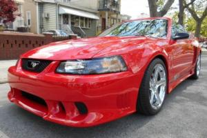 2002 Ford Mustang Speedster