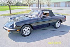 1986 Alfa Romeo Spider Veloce Photo