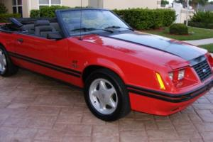 1984 Ford Mustang Photo