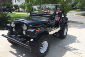 1980 Jeep CJ CJ5