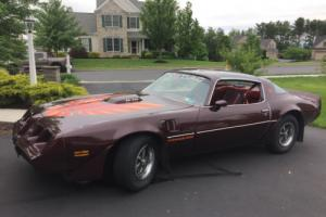 1980 Pontiac Trans Am Photo