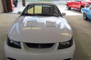 2003 Ford Mustang Convertible Photo