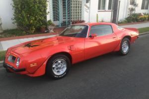 1975 Pontiac Trans Am Photo
