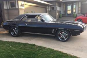 1969 Pontiac Firebird Photo