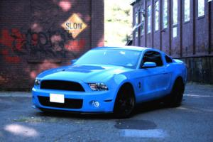 2010 Ford Mustang GT500 Photo