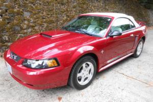 2003 Ford Mustang Pony Package