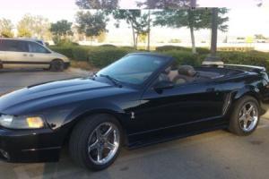 2001 Ford Mustang Cobra SVT