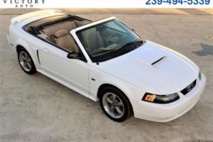 2002 Ford Mustang Convertible Photo