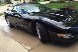 2001 Chevrolet Corvette Fun Model Photo
