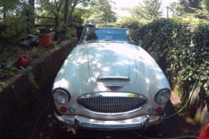 1967 Austin Healey 3000