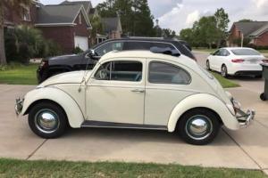 1962 Volkswagen Beetle - Classic Photo