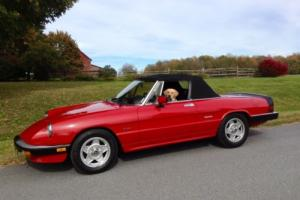 1988 Alfa Romeo Spider for Sale