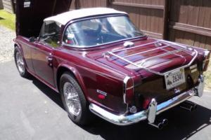 1968 Triumph TR 250 TR 250 Photo