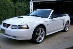 2002 Ford Mustang Convertable