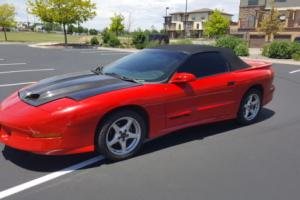 1996 Pontiac Firebird Trans AM Photo