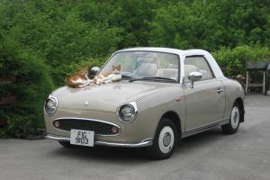 FABULOUS, FUN AND FUNKY FIGARO IN RARE AND BEAUTIFUL TOPAZ MIST COLOUR