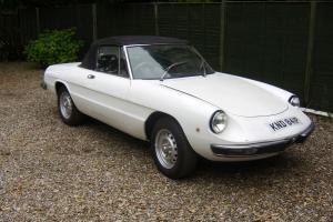 Alfa Romeo Spider S2