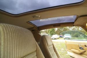 1981 Pontiac Trans AM Factory Turbo V8 Never Modified With Books Receipts