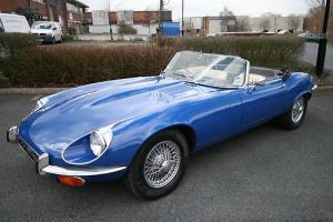 Jaguar OPEN