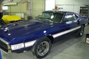 Ford Mustang Shelby GT 350 1969 Photo