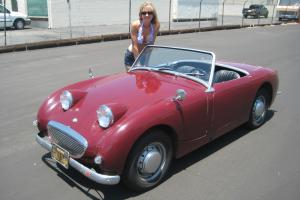 1960 Austin Healey Bugeye Sprite, Black Plate California Car, very nice Frogeye Photo