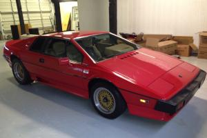 1987 Lotus Esprit turbo HCI 29000miles great running condition totally gone over