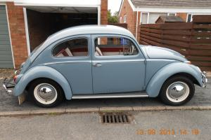vw beetle 1959,just restored inside and out,fortune spent,dove blue,lovely vw