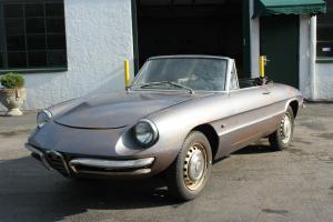 1967 Alfa Romeo Duetto ***NO RESERVE***