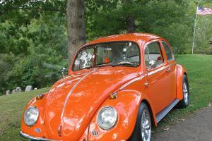 1966 Volkswagon Sedan Beetle