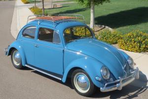 1957 VW Beetle Stunning Restoration on a Rust Free California Car Must See!!!