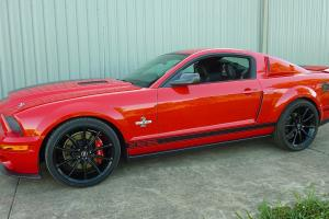 2009 Shelby Mustang Supersnake in Moreton, QLD  Photo