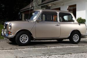 1968 Riley Elf Mk3 (Posh Mini)