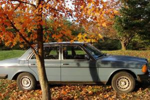 1982 Mercedes Benz 300D  Kept in good condition Sky blue paint Automatic