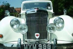 ALVIS TA21 CLASSIC WHITE  Photo