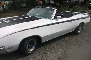 Buick : Skylark gsx Photo