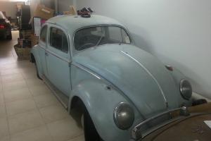 VW BEETLE OVAL 1956