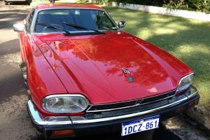 Jaguar XJS V12 1981 2D Coupe 3 SP Automatic 5 3L Electronic F INJ
