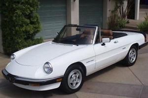 1986 ALFA ROMEO VELOCE SPIDER WHITE CLASSIC ROADSTER EXCELLENT CONDITION IN &OUT