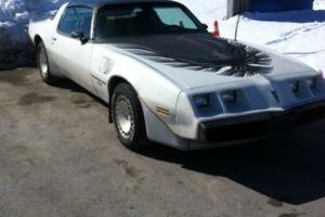 Pontiac : Trans Am OFFICIAL PACE CAR