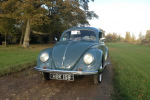 1952 VW Beetle Split Rear Window - Seriously Rare