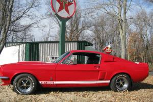 1967 MUSTANG FASTBACK  SHELBY GT350 TRIBUTE REAL  EYE STOPPER