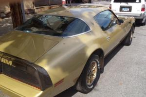 1979 Pontiac Trans am 6.6L 403