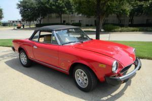 1981 Fiat Spider