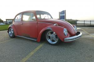 CLASSIC VW BEETLE 1968 ***Magazine feature***** Photo