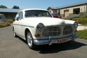 Volvo 122s in Castlemaine, VIC