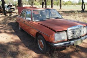 Mercedes W123 Series 300D 230 AND 280E Collection in Dubbo, NSW