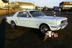 Show Winning 1964 1/2 V8. Ideal 50th Ford Mustang Anniversary Investment