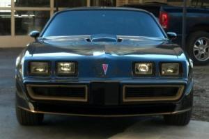 Pontiac : Trans Am Velour